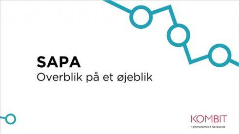 SAPA - Overblik på et øjeblik